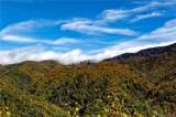 0000 Bearwallow Ridge Trail - Photo 16