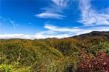 0000 Bearwallow Ridge Trail - Photo 21