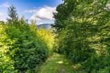 0000 Bearwallow Ridge Trail - Photo 8