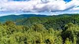 0000 Bearwallow Ridge Trail - Photo 9