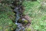 0000 Big Spring Trail - Photo 8