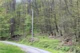0000 Big Spring Trail - Photo 9