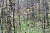 0000 Big Spring Trail - Photo 20