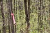 0000 Big Spring Trail - Photo 22