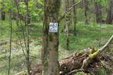 0000 Big Spring Trail - Photo 4