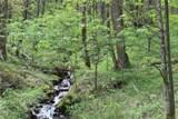 0000 Big Spring Trail - Photo 7