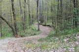 0000 Big Spring Trail - Photo 18