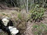 139 Chattooga Run - Photo 5