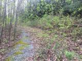 1015 Old Mill Road - Photo 1
