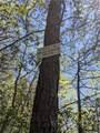 259 Winding Ridge Road - Photo 4