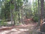 106 Ac Turkey Creek Ridge Road - Photo 5