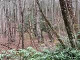 Lot 3 Steel Creek Road - Photo 12