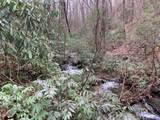 Lot 3 Steel Creek Road - Photo 6