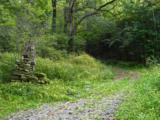 000 Indian Camp Creek Road - Photo 1