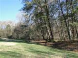 10525 Wildlife Road - Photo 1