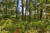 9999 Country Ridge Road - Photo 13