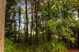 9999 Country Ridge Road - Photo 9
