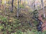 0 Dancing Bear Trail - Photo 2
