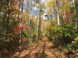 TBD Long Branch Road - Photo 15