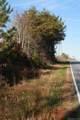 Lot 4 Piney Mountain Church Road - Photo 6