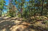 184 Rock Ridge - Photo 13