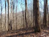 Lot 44 Fern Trail - Photo 1