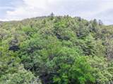 2397 Diamond Creek Road - Photo 31