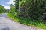 2397 Diamond Creek Road - Photo 34