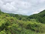 000 Meadow Fork Road - Photo 19
