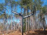 Lot 47 Plantation Pointe Drive - Photo 2