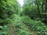 0 Yonah Trail - Photo 3