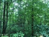 0 Yonah Trail - Photo 9