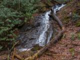 117 Mountain Lily Ridge Road - Photo 3