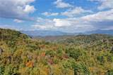 VL 308 Mountain Forest Road - Photo 2