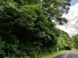 Tract 5 Rabbit Skin Road - Photo 3