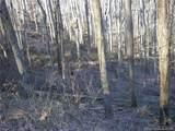 15 Spirit Mountain Trail - Photo 6