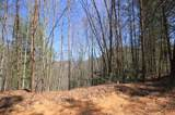 102 Acres Buffalo Mountain Road - Photo 11