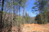 102 Acres Buffalo Mountain Road - Photo 12
