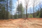 102 Acres Buffalo Mountain Road - Photo 19