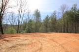 102 Acres Buffalo Mountain Road - Photo 20