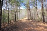 102 Acres Buffalo Mountain Road - Photo 21