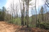 102 Acres Buffalo Mountain Road - Photo 23