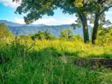 15 Wandering Oaks Way - Photo 1