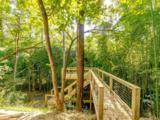 15 Wandering Oaks Way - Photo 16