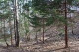 38.54 acres Sams Branch Road - Photo 11