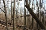 38.54 acres Sams Branch Road - Photo 16