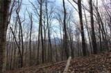 38.54 acres Sams Branch Road - Photo 22