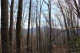 38.54 acres Sams Branch Road - Photo 23