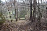 38.54 acres Sams Branch Road - Photo 3