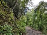 Tract 10 Kate Mountain Road - Photo 15